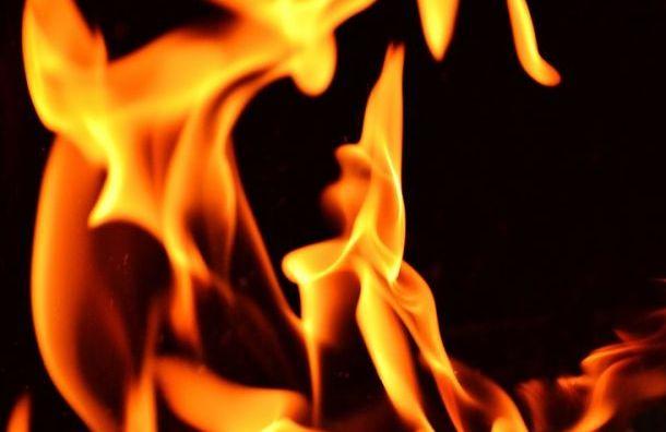 Трехкомнатная квартира горела вПушкине