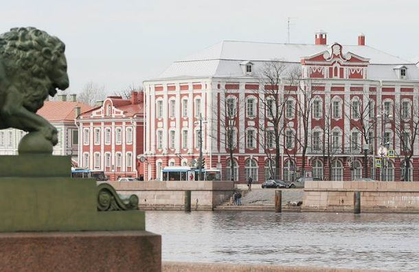 Смольный предложил перенести митинг взащиту СПбГУ наокраину