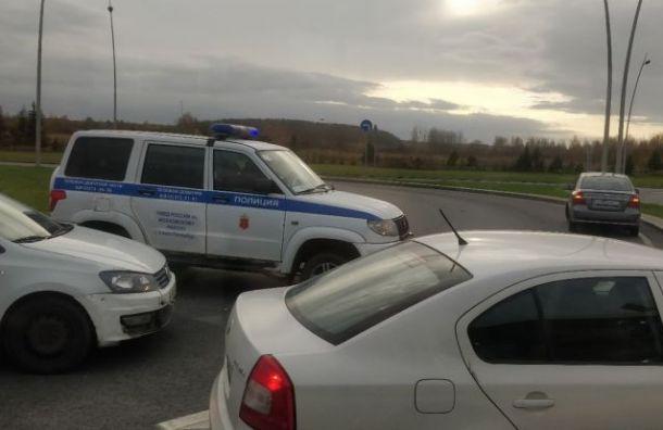 Пассажиры опаздывают нарейсы из-за проверки таксистов уПулкова