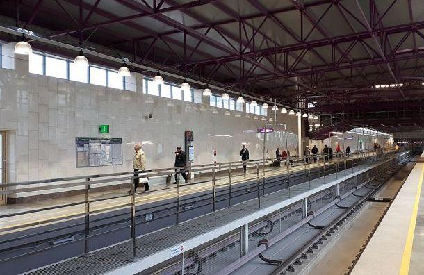 Чиновники объяснили отказ переименовать станцию «Шушары» в«Южную»