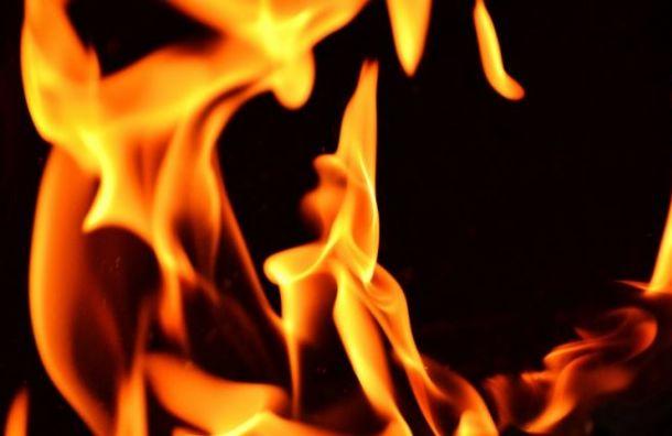 При пожаре наулице Хошимина погиб мужчина