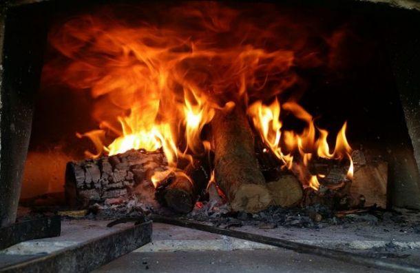 Супруги сожгли внука впечи, потому что онгромко кричал