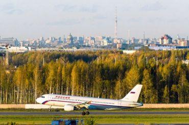 Птица задержала рейс Петербург— Париж напять часов