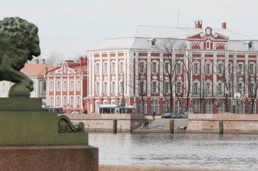 Смольный согласовал митинг взащиту СПбГУ