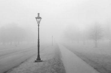 Туман местами скроет Петербург вчетверг