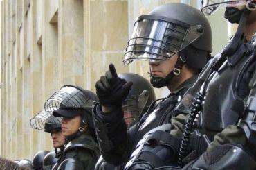 Сотни полицейских ссобаками устроили рейд впоисках мигрантов