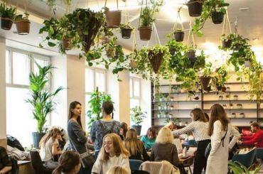 Благотворительное кафе-оранжерея открылось наОбводном канале