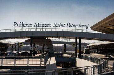 Первых пассажиров сэлектронными визами вПулкове встретил желтый кот