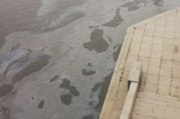 Специалисты ненашли вНеве следов нефти