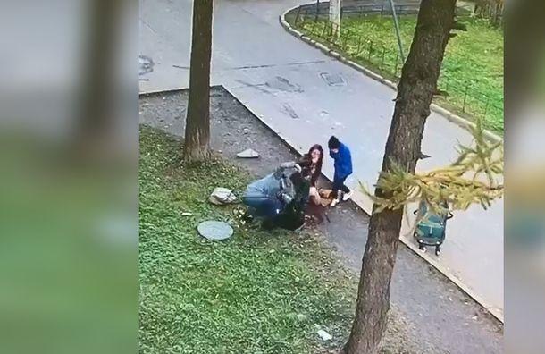Молодёжное «Яблоко» Петербурга отреагировало нападение ребёнка влюк