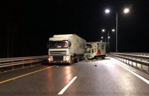 Два человека погибли вДТП сгрузовиками наскоростной трассе М-11