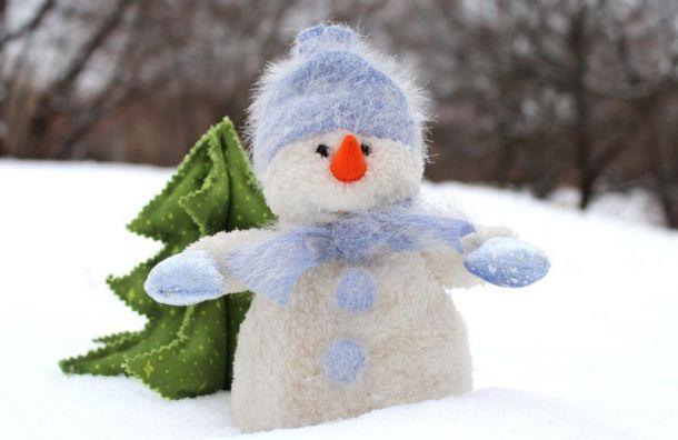 Синоптики обещают петербуржцам по-настоящему зимний Новый год