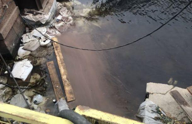 Подрядчику «Мостотреста» грозит штраф зазагрязнение Мойки