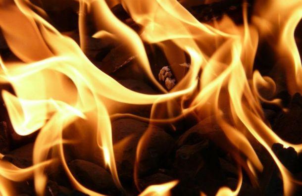 Утренний пожар вцентре Петербурга тушили 16 пожарных