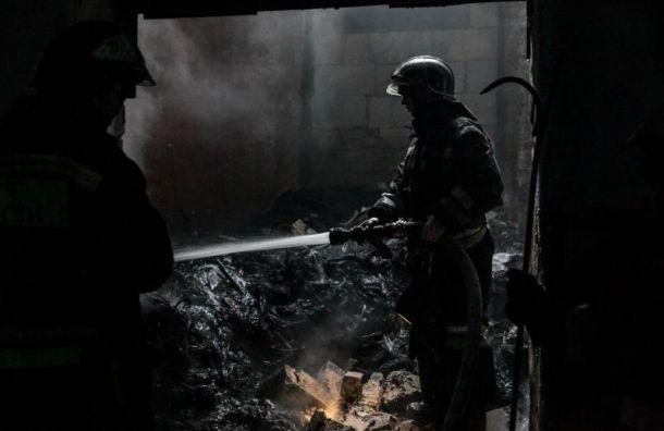 Всгоревшем дачном доме вЛенобласти обнаружили труп