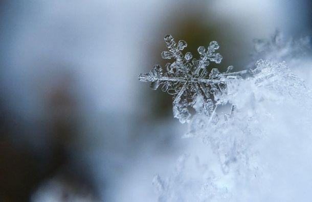 Морозный антициклон придет вПетербург навыходные