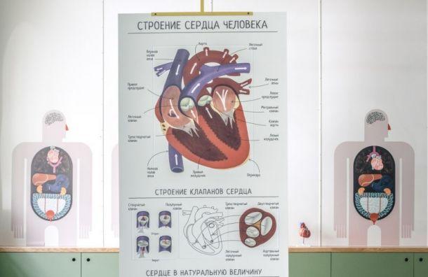 Музей здоровья откроется в Петербурге 7 ноября