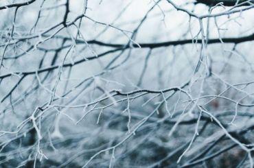 Синоптики пообещали петербуржцам впятницу мороз игололед