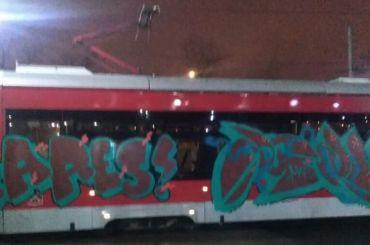 Неизвестные разрисовали петербургский трамвай