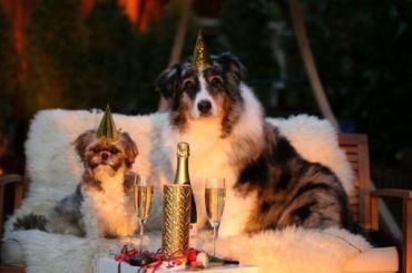 Роструд объяснил, как продлить новогодние праздники