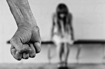 Законопроект одомашнем насилии опубликовали ипредложили обсудить