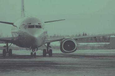 Пенсионер поошибке «заминировал» самолет, вылетающий вПетербург