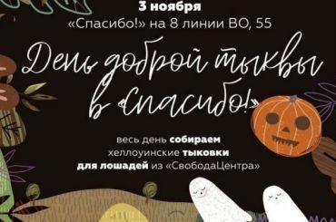 Активисты призвали петербуржцев невыбрасывать тыквы после Хэллоуина