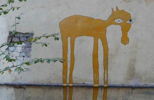 Петербуржцы заметили необычных лошадок сбольшими глазами