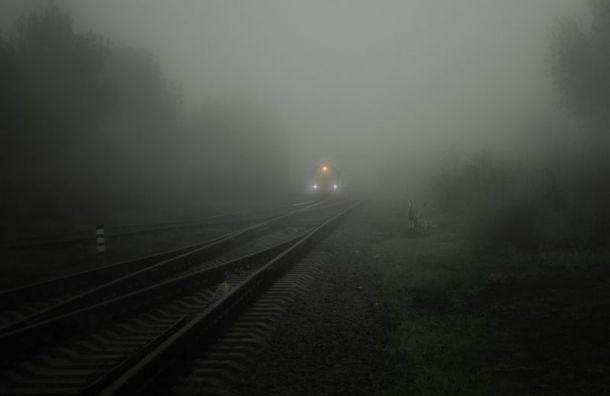 Поезд сбил пенсионера вЛенобласти
