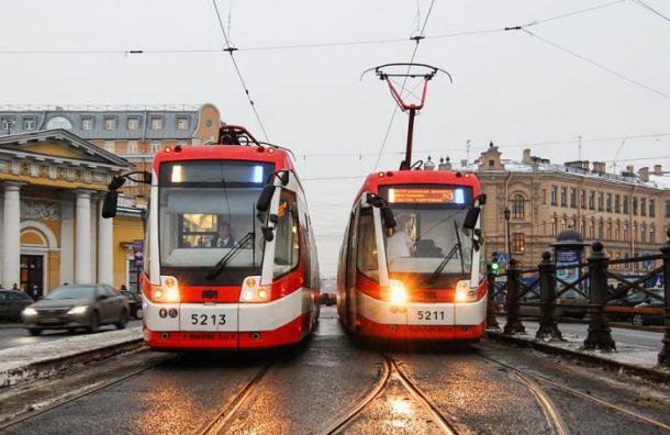 «Итальянская забастовка» водителей может начаться вПетербурге