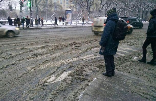Петербуржцы пожаловались нааномальные пробки после снегопада