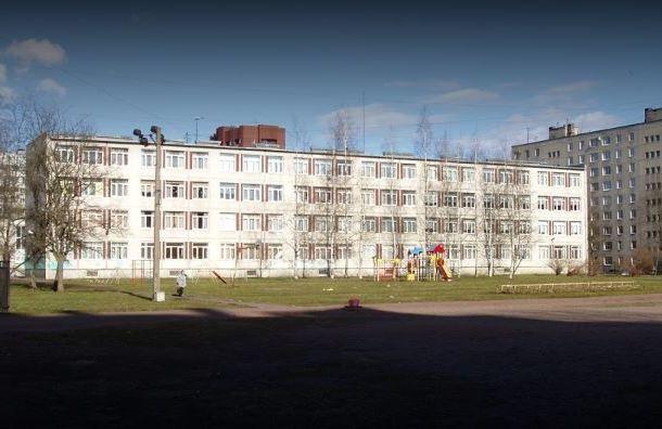 Депутат Госдумы попросил Роспотребнадзор проверить школу врайоне Купчино