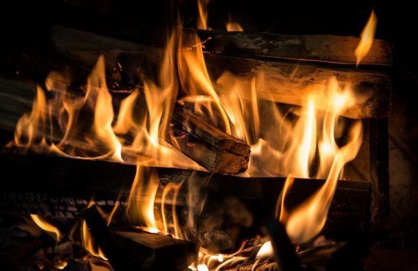 Мужчина сгорел впожаре наВасильевском острове