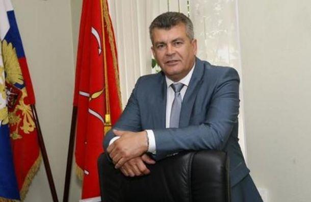 Главу Колпинского района исключили изправительства