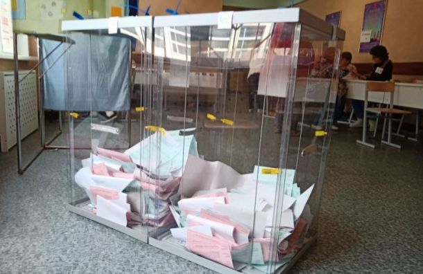 Топ-5 нарушений навыборах-2019 вПетербурге