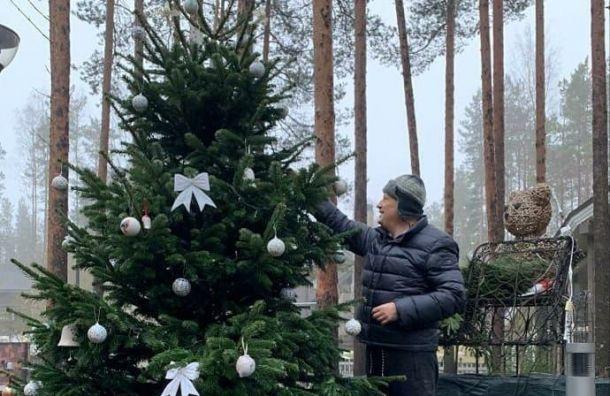 Дрозденко поделился фотографиями с наряженной уличной елкой