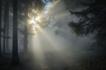 Петербуржцы наблюдали вдекабре солнце 2,5 часа