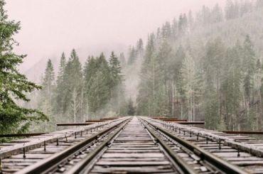 Девушка выжила после того, как еёсбил поезд