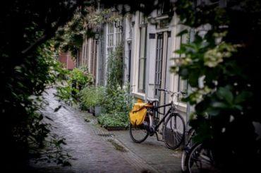 КРТИ рассказал, где могут появиться петербургские велодорожки