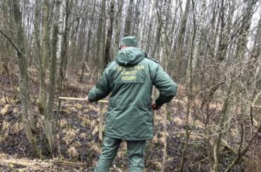 Устрелявшего вохранников газопровода охотника нашли взрывчатку