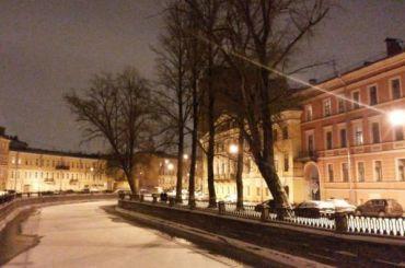 Вишневскому пообещали нерубить деревья наканале Грибоедова