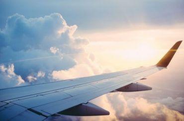 Семья изПетербурга купила самые дорогие авиабилеты вНовый год