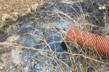 Экологи узнали, что течет вканавы узавода попереработке отходов вЯнино