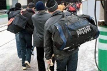 Мигранты требовали вЛенобласти денег застроительство трассы М-11