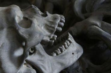НаМурманской трассе нашли скелет ребенка