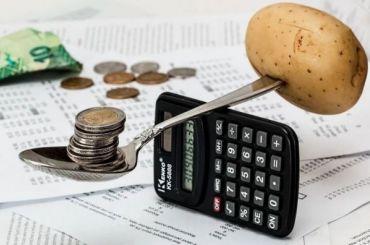 КСП проверит бюджеты поселка Шушары иокруга «Георгиевский»