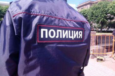 При задержании уличных грабителей вПетербурге пострадал полицейский