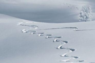 Сайт мониторинга снегоуборочной техники перестал работать
