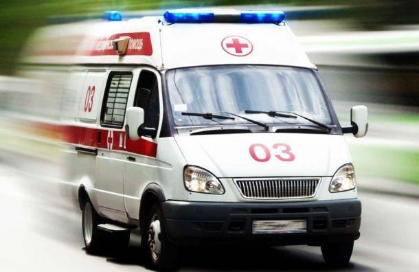 ВБоткинскую больницу госпитализировали двух пациентов сподозрением накоронавирус