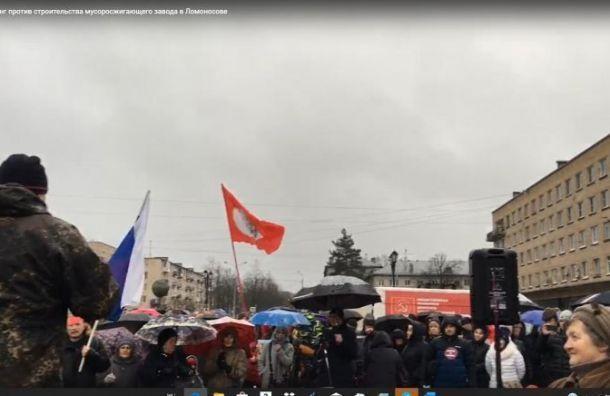 Митинг против строительства мусоросжигательных заводов пройдет 25января